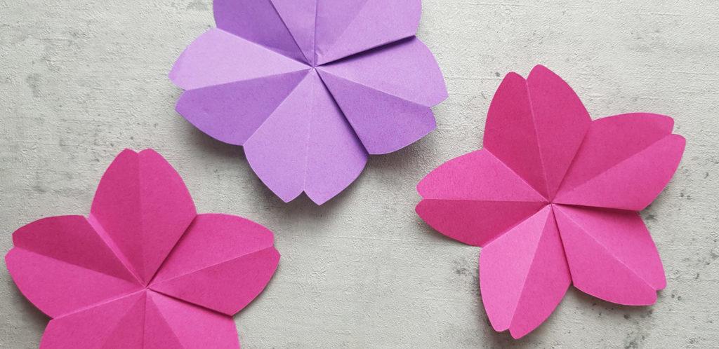 4 Ideen für deine Kirschblüte